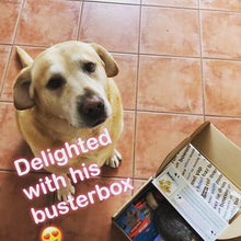 BusterBox Best Friend Christmas Subscription - 12 Month + FREE Boris Today