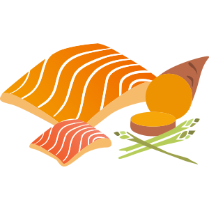 Medium Dog Salmon - 6KG Every 4 Weeks