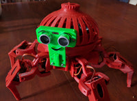 Hexapod Professional Development Workshop