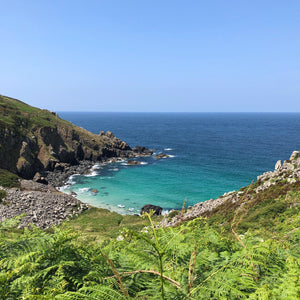Clandestine Cornish Coves