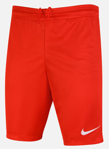 Nike Men's Dri-Fit Swoosh Red Wicking Shorts