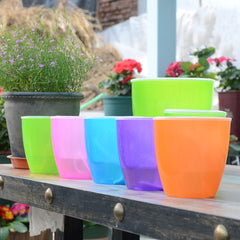 Self Watering Colourful Plant Flower Pot