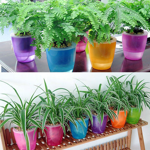 Self Watering Colourful Plant Flower Pot - Zstore.co