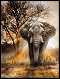 Elephant in The Wild Diamond Painting