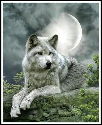 Beautiful Wolf Diamond Painting