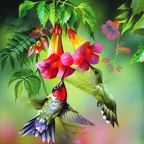 DIY Hummingbirds Diamond Painting