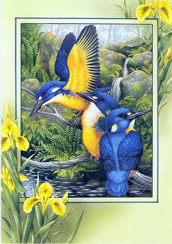 """New"" 5D Diamond Painting Bird Collection"