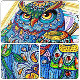 Special Shape Diamond Embroidery Owls