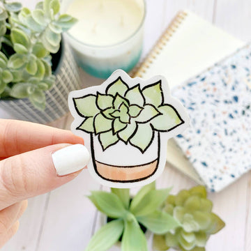 Watercolor Succulent Plant Sticker