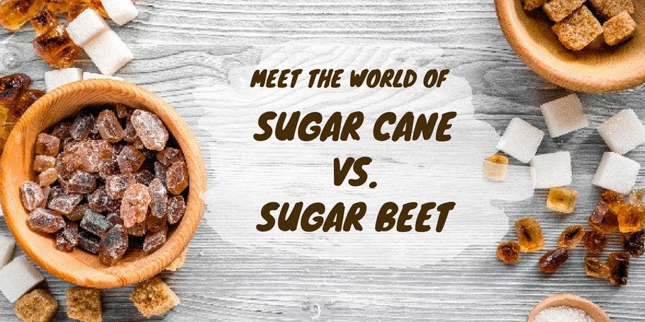 Meet the world of Cane Sugar vs. Sugar Beet