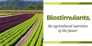 biostimulants, crops, vegetative, growers, agricultura, nutrition, agrobio