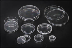 SPL Cell Culture Dish,100x20mm, PS,TC treated, sterile to SAL 10-6, external grip, Case of 200 - BiochromCorp