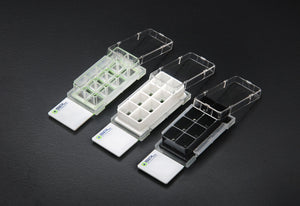 SPL Cell Culture Chamber slide, White, 8 wells, PS frame, glass slide, PP holder, 0.2~0.6 ml, Sterile, Case of 12 // 2 pack of 6 - BiochromCorp