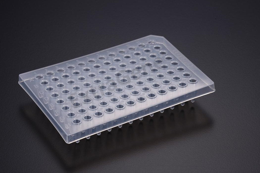 Extragene PCR Plate 96-Well, Half Skirt DNase and RNase free (Pk x 10 plates) - BiochromCorp