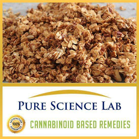 CBD Granola Bite Edibles 60mg 4 Pack-Lab Quality CBD