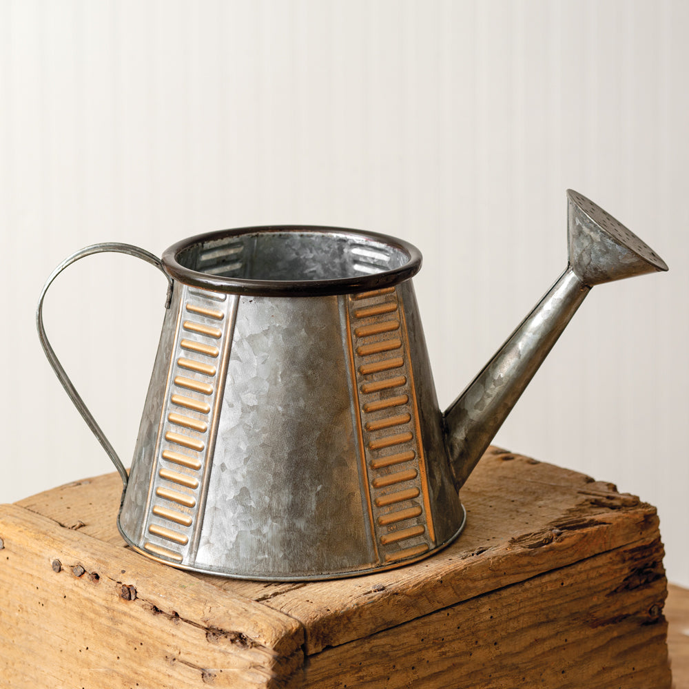 Charming Galvanized Watering Can
