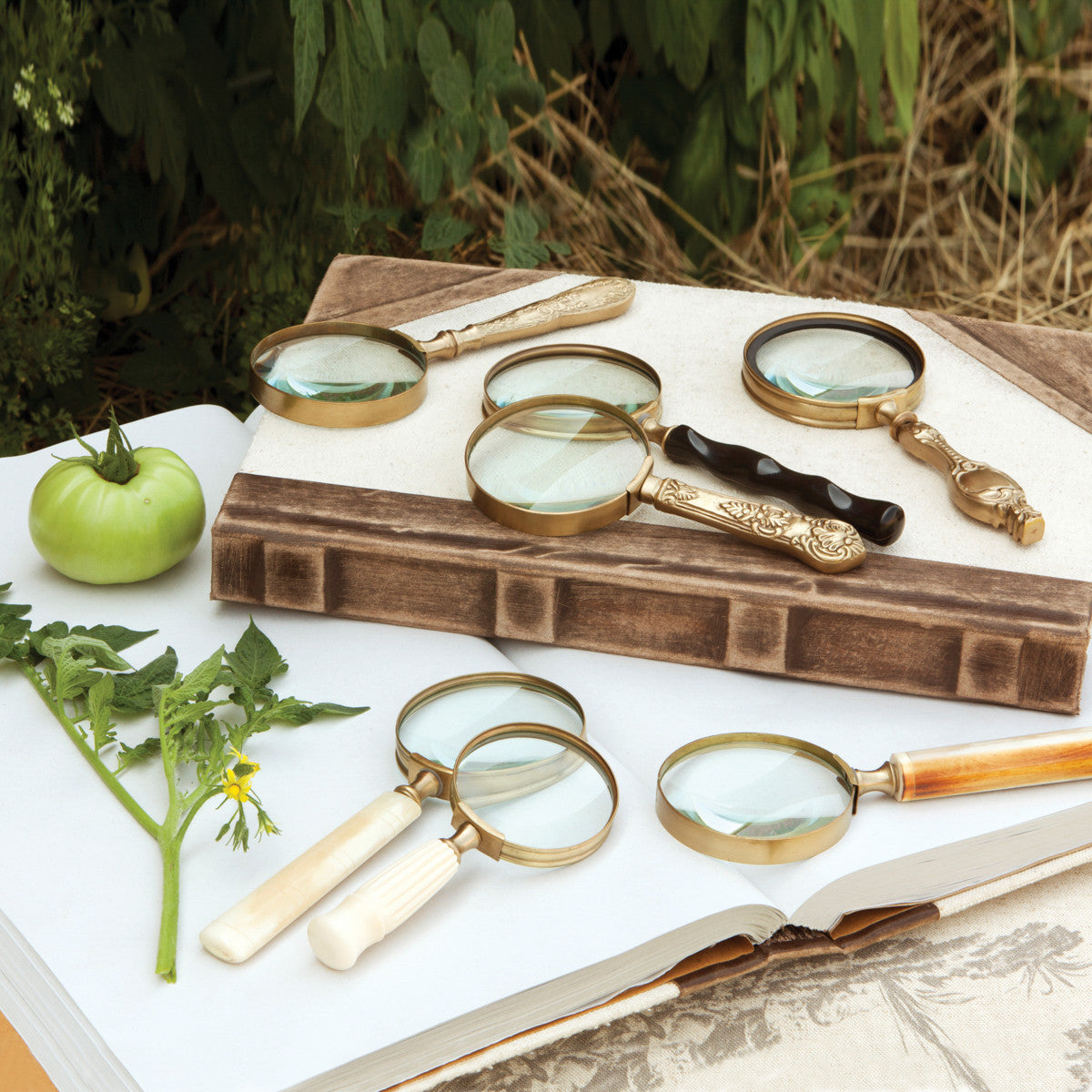 Magnifying Glass Collection, Set of 7, Assorted Styles