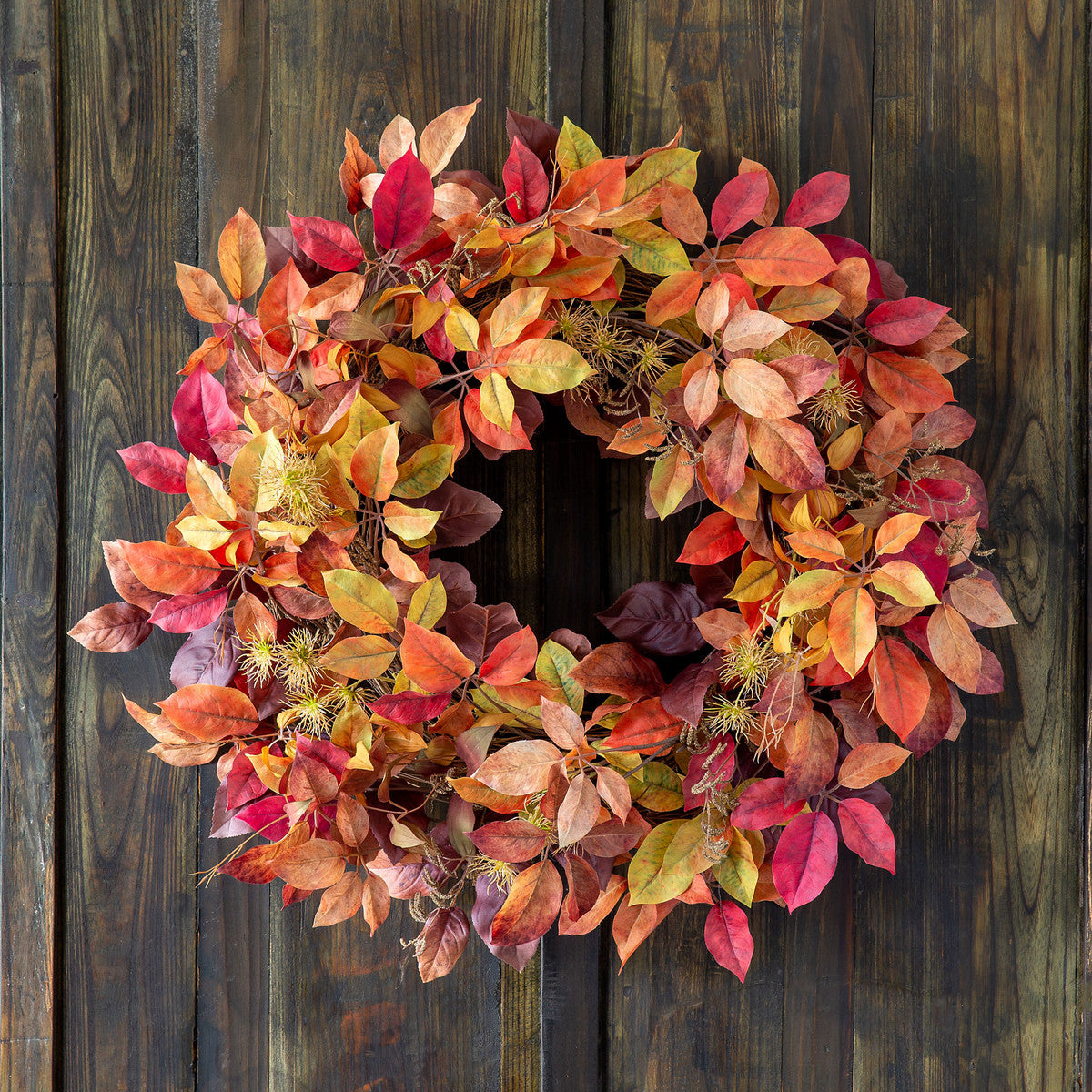 Autumn Virginia Creeper Wreath