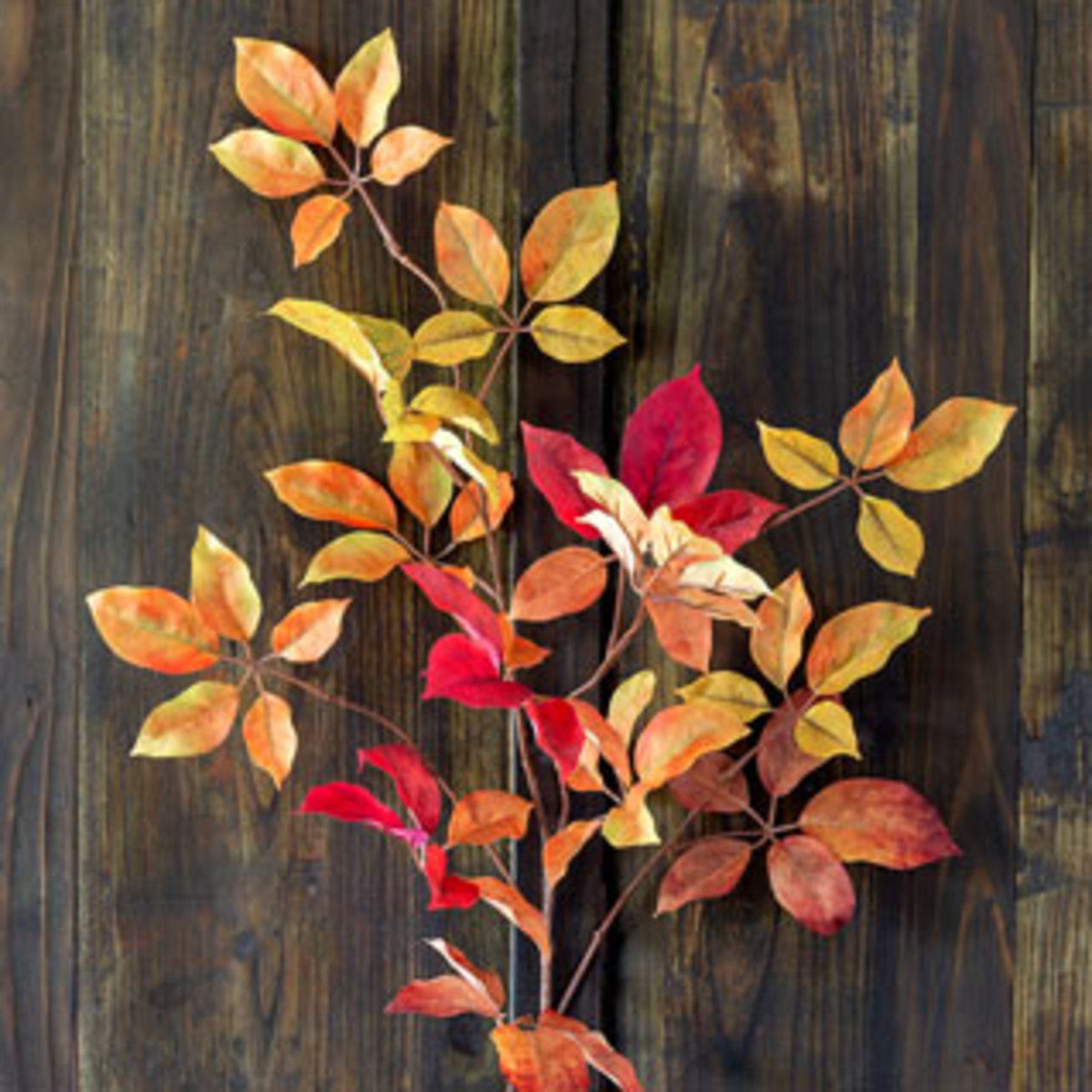 Autumn Virginia Creeper Leaf Spray - Set of 6