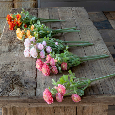 Field Gathered Ranunculus - Set of 12 in  4 Assorted Colors