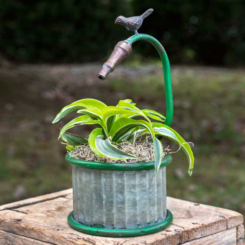 Garden Hose Small Planter