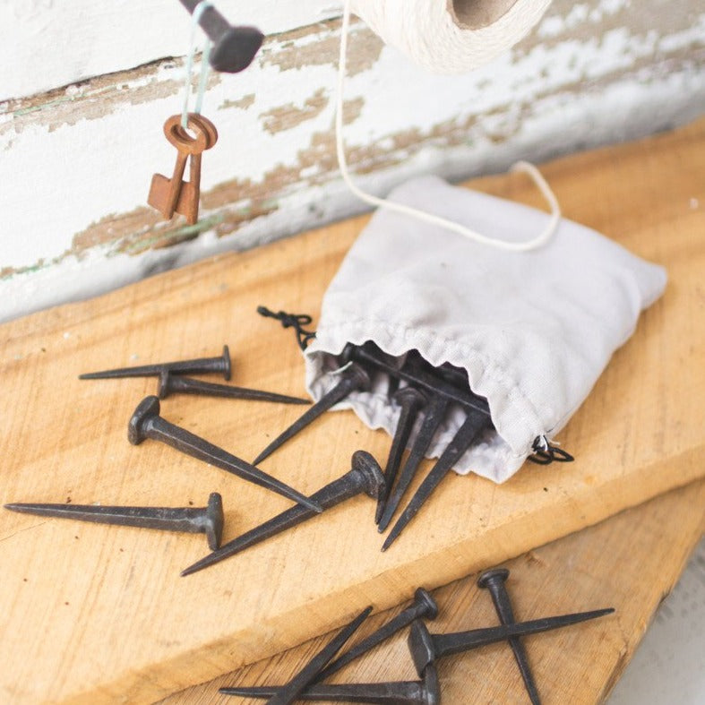 Hand Forged Nails - Bag of 24