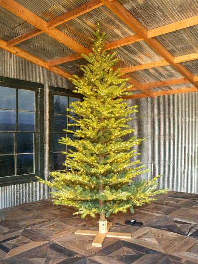 9' Great Northern Spruce Tree with Micro LED Lights