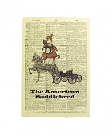 Ivy Johnson Saddlebred Dictionary Art