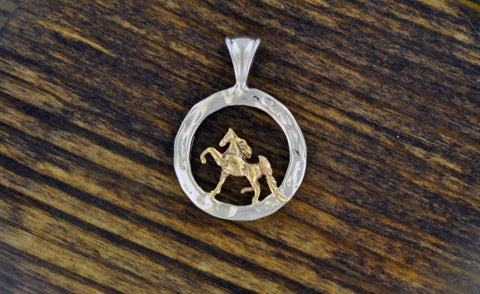 14kt Gold Saddlebred in Sterling Silver Hammered Circle Pendant