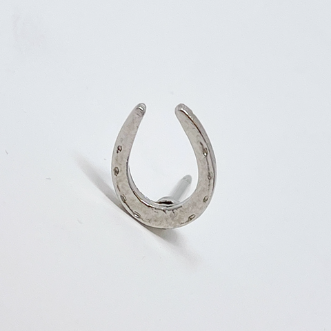 Horseshoe Pin