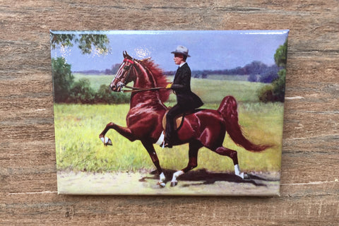Wing Commander Saddlebred Horse Magnet