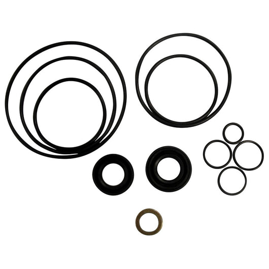 1101-1007-AP S Pump Seal Kit