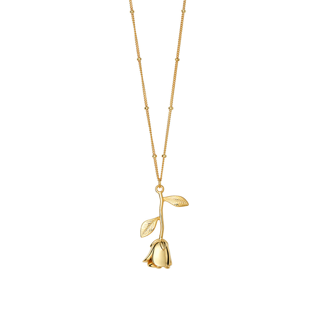 AYM California Rose Necklaces Gold