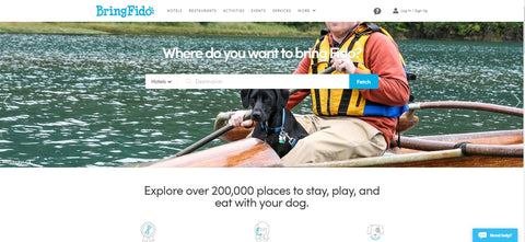 traveling with your pet - livingto100.club