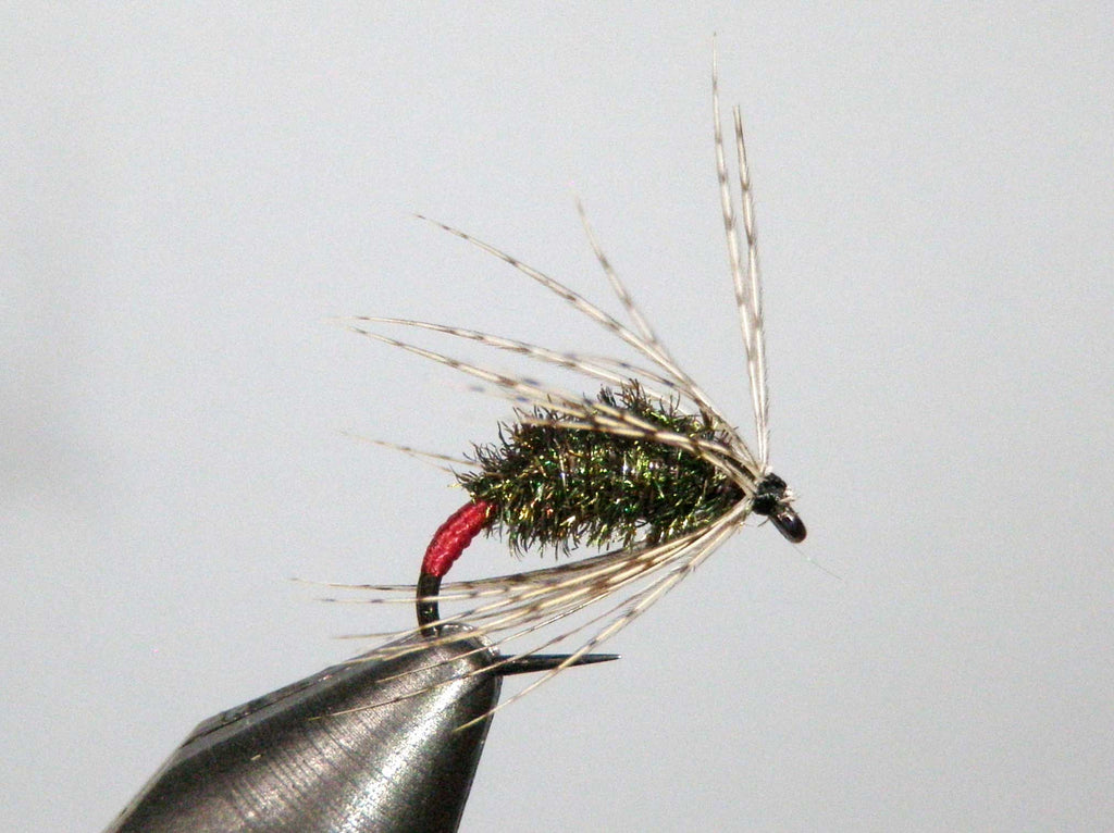 Red Butt Soft Hackle by Jim
