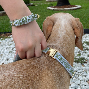 Matching Dog Collar & Bracelet - Groovy Green - Unicornabilia