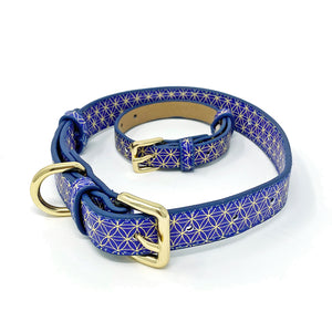 Matching Dog Collar & Bracelet - Midnight Sky - Unicornabilia