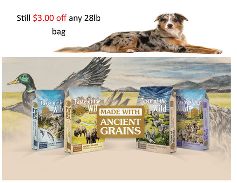 taste of the wild dog food on sale in store