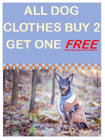 dog clothes sale in store