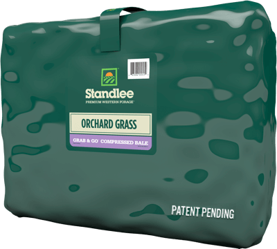 STANDLEE PREMIUM ORCHARD GRASS GRAB & GO® COMPRESSED BALE