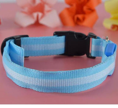 LED Dogs Collar