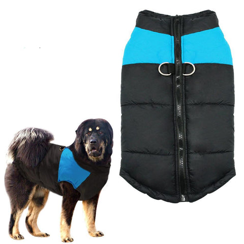 Vest Pet Clothing