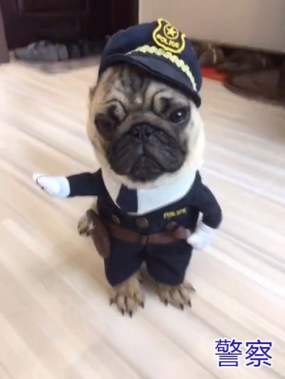 Halloween Costume  for Small Dogs and Puppies