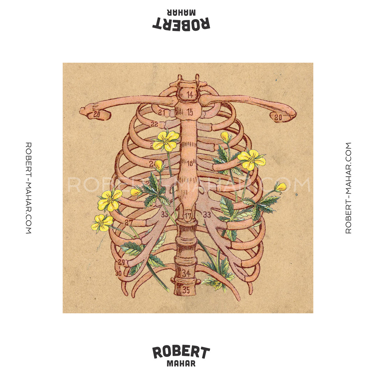Robert Mahar Will Someone Kindly Find A Problem With My Diagramthanx Rob Right Carousel Arrow