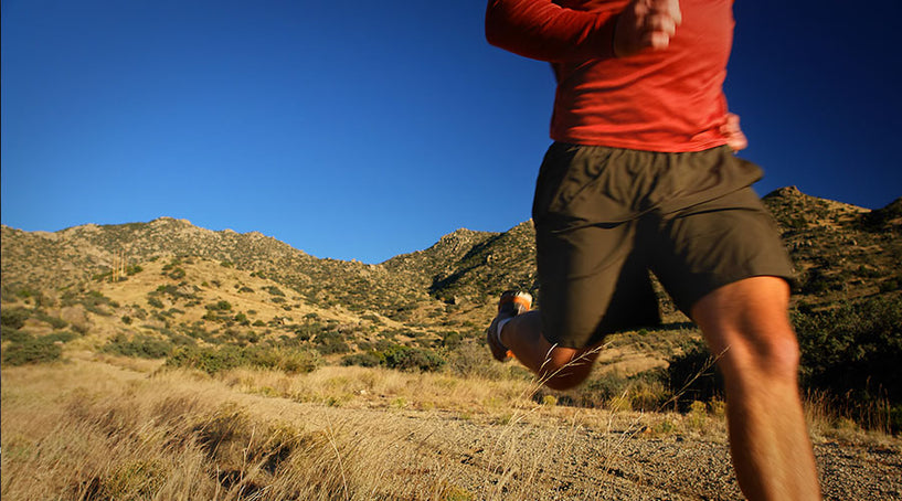 PCT (Post Cycle Therapy) – Prosource