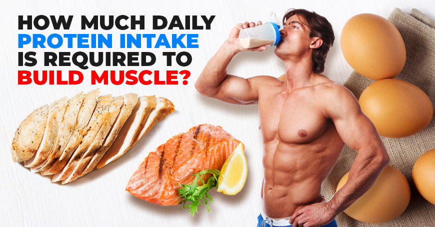 How Much Daily Protein Intake Is Required to Build Muscle?