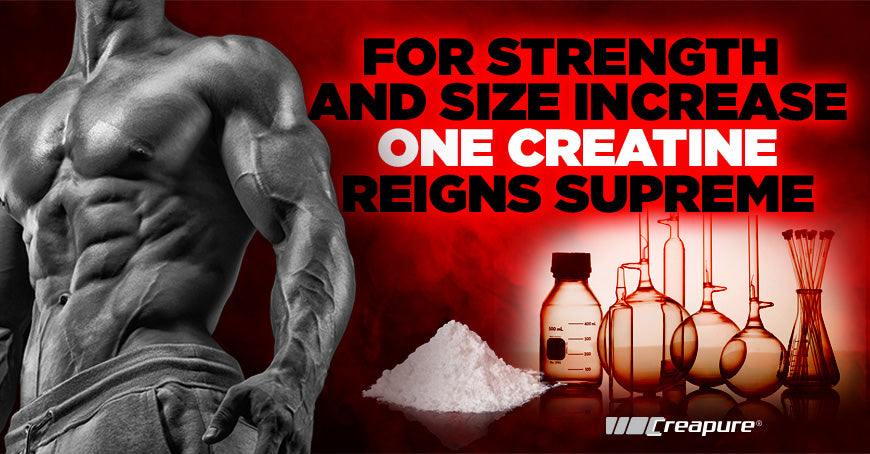 For Strength and Size Increase, One Creatine Reigns Supreme