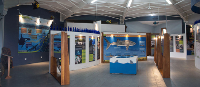 Marine World Exhibit Opens in Celebration of World Oceans Day in Galapagos
