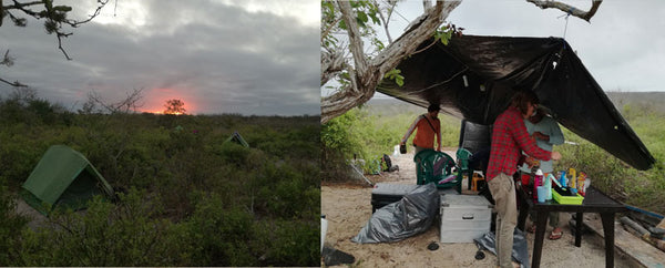 Left photo: Manzanillo beach camp. Right photo: members of the team in the camp kitchen. Photos: Irene Peña, CDF