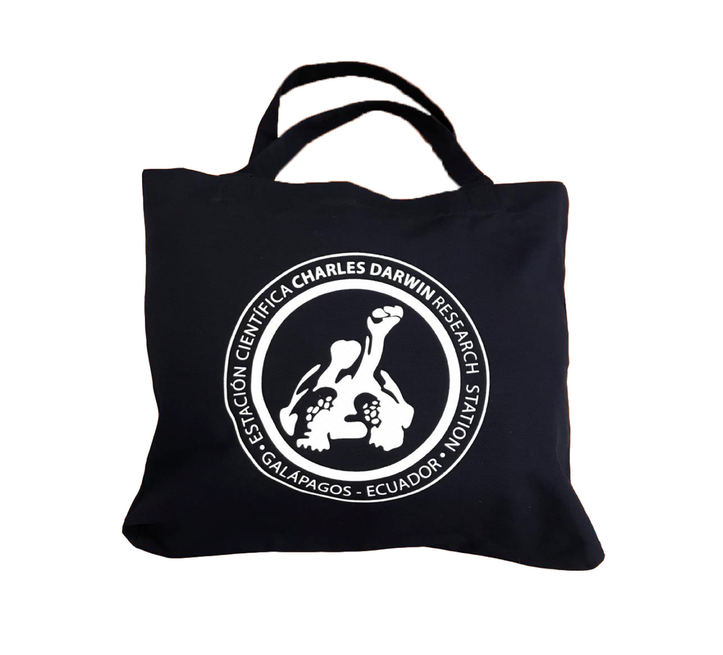 Beach Bag Blue Logo CDF